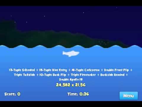 Dolphin Olympics 4