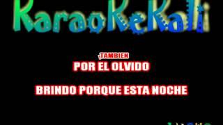 ANDRES CALAMARO   BRINDO KARAOKE DEMO
