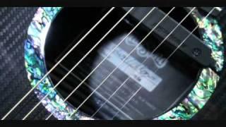 David Wilcox Rainsong Guitar