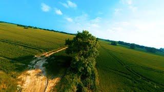 [8K] Tree Surfing - 6S Squirt V2 HD FPV