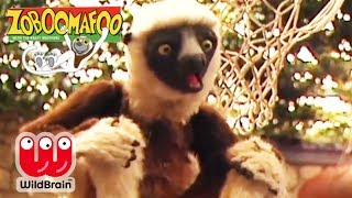 zoboomafoo episode 201 snakebellies animal shows for kids