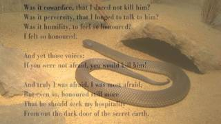 Snake by D H Lawrence (read by Tom O