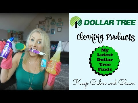Dollar Tree Cleaning Products Haul| Dollar Tree Finds| Keep Calm and Clean