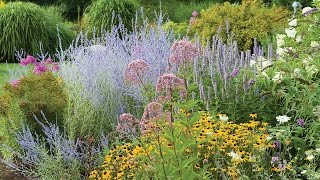 Introduction to Perennials