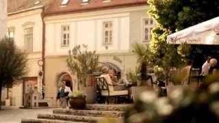 preview picture of video 'Toldi Apartments Pécs Hungary (Toldi Apartmanok Pécs Magyarország)'