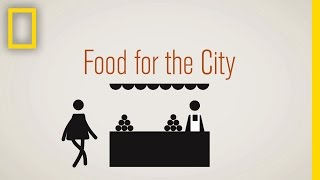 Food for the City | National Geographic thumbnail