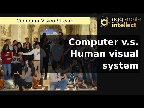 Computer v.s. Human visual system