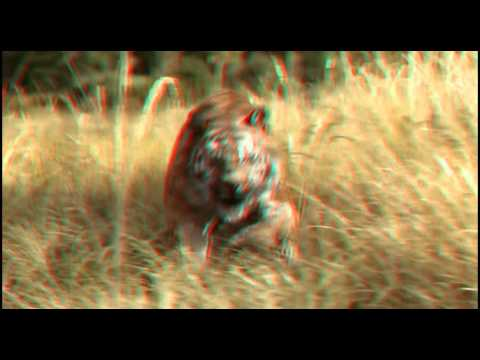 The Jungle Book Trailer  RC 3D