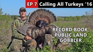 4 Beards! - Public Land Gobbler - Calling All Turkeys