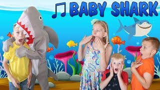 Baby Shark || Family Fun Pack Style