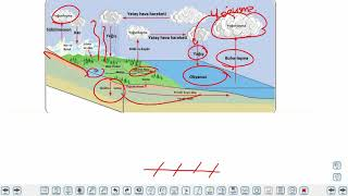 Eğitim Vadisi AYT Coğrafya 1.Föy Ekosistemlerin Özellikleri ve İşleyişi 3 (Enerji Piramidi, Madde Döngüleri) Konu Anlatım Videoları