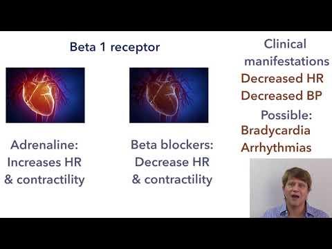 Hipertensioni si të merren me të