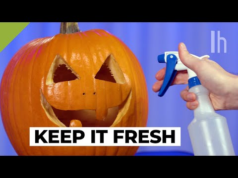 How To Preserve A Jack-O'-Lantern