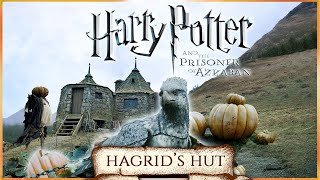 Hagrid's Hut [ASMR] Hogwarts in Autumn 🍁Harry Potter 3 inspired Ambience 🍂🎃 Pumpkins, Falling leaves