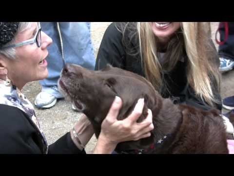 Blessing Animals in the St. Francis of Assisi Garden 2015