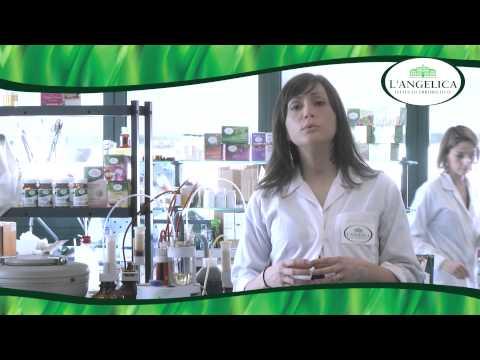 A base di erbe abbassando la pressione per il trattamento di erbe ipertensione
