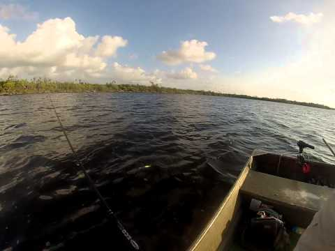 Cenote lagoon on a windy day... trolling a fly for Tarpon.