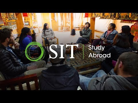 SIT Study Abroad China: Health, Environment, and Traditional Chinese Medicine