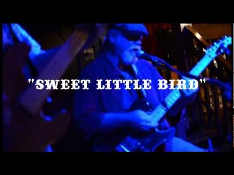 "BLUES LIGHTNING LIVE @ SOUTHERN SOUL | ""SWEET LITTLE BIRD"""