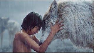 Chú Chó Anh Dũng | Phim Hành Động Phiêu Lưu 2019 | Thuyết Minh | MPlus
