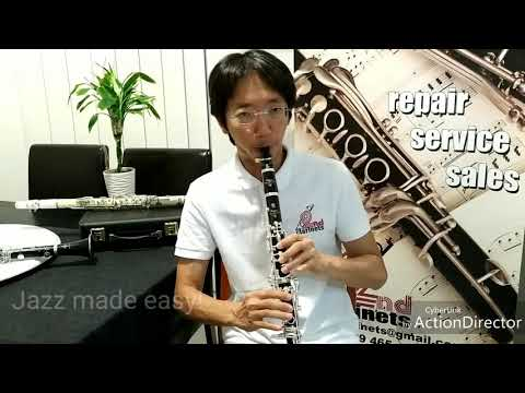 Yamaha SEVR Clarinet Demo and Review