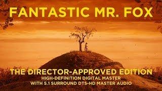 Fantastic Mr. Fox (2009) Video