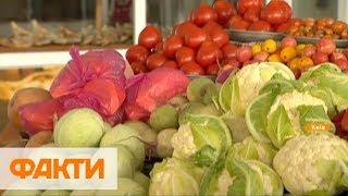 Мясо, молочка и овощи - почему подорожали и как еще вырастут цены на продукты