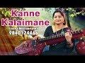 Kanne Kalaimaane - film Instrumental by Veena Meerakrishna