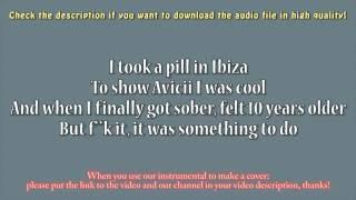 Mike Posner - I Took A Pill In Ibiza (Guitar Instrumental) Karaoke