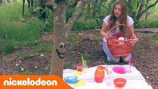 Блог Анфисы | Летний пикник | Nickelodeon Россия