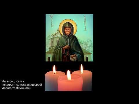 Молитва Матушке Алипии Голосеевской от бесплодия, грыж, болезней костей