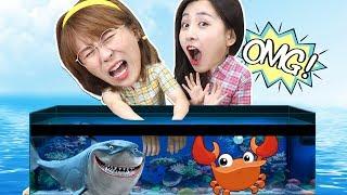 小伶推理之水箱裡面有什麼?觸覺挑戰海洋生物摸摸看!小伶玩具 | Xiaoling toys