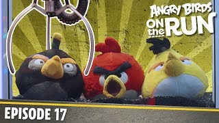 Angry Birds On The Run   The Claw Machine   S1 Ep17