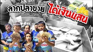 (ตอนจบ) บ่อ 3 ไร่ เลี้ยงปลาขาย ได้เงินเท่าไร   เด็กตกปลา