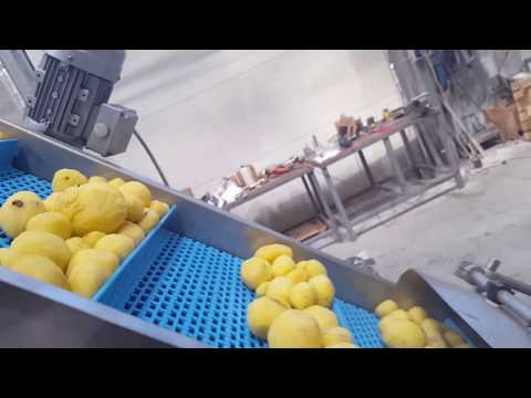 , title : 'French fries production line