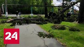 Срывал крыши и валил деревья: мощный ураган бушевал в Кемеровской области - Россия 24