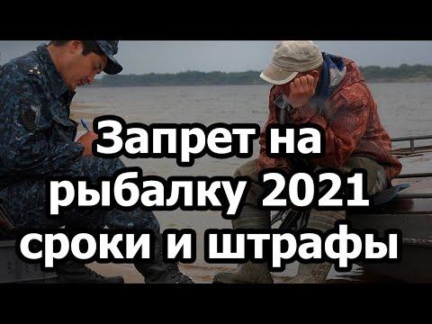 Запрет на рыбалку 2021, сроки и штрафы.
