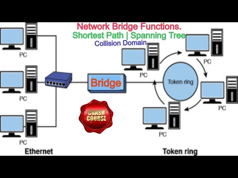 Network BRIDGE | What is Network Bridge | Network Bridge Function | Pros & Cons of  Network Bridge