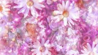 راشد الماجد - أغلى الورود لمحمد