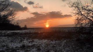 ОСТОРОЖНО ОЛЕНЬ!! прогулка по лесам Польши Олени закат солнца красиво