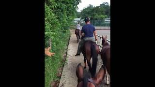 I was riding Jackie O