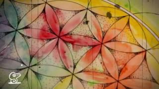 Fleur de vie - Vidéo