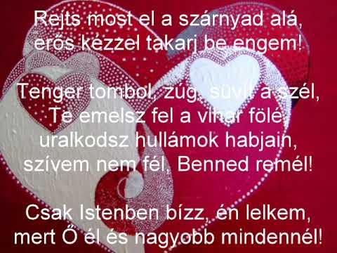 Csiszér László - Rejts most el letöltés