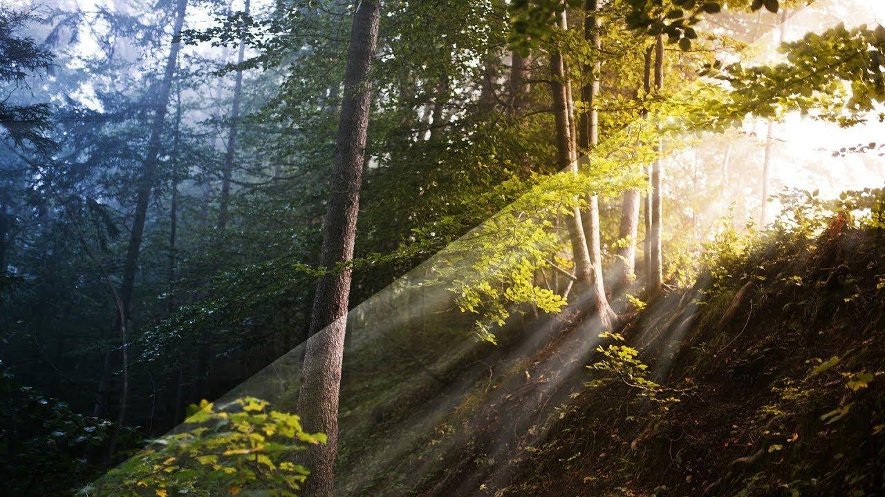 Realistische Sonnenstrahlen erstellen – Photoshop-Tutorial