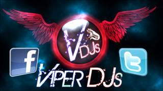 Bhangra Mix Part 3 | Viper DJs