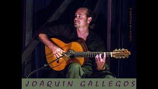 Guitarist Joaquin Gallegos