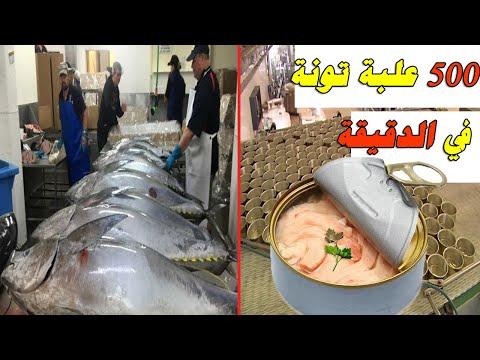 مصانع عملاقة| جولة مذهلة داخل  مصنع التونة، خط إنتاج يعبأ 500علبة تونة في الدقيقة، (صناعة التونة)