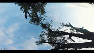 Gaps heaven | FPV freestyle