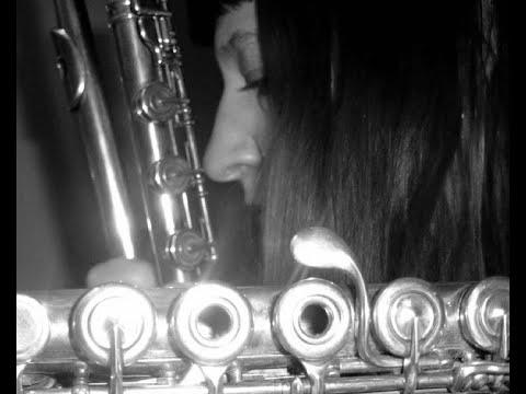CHERYL PYLE -Musician -JAZZ FLUTE