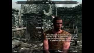 Skyrim Characters - Desmond Miles ( Assassin's Creed )